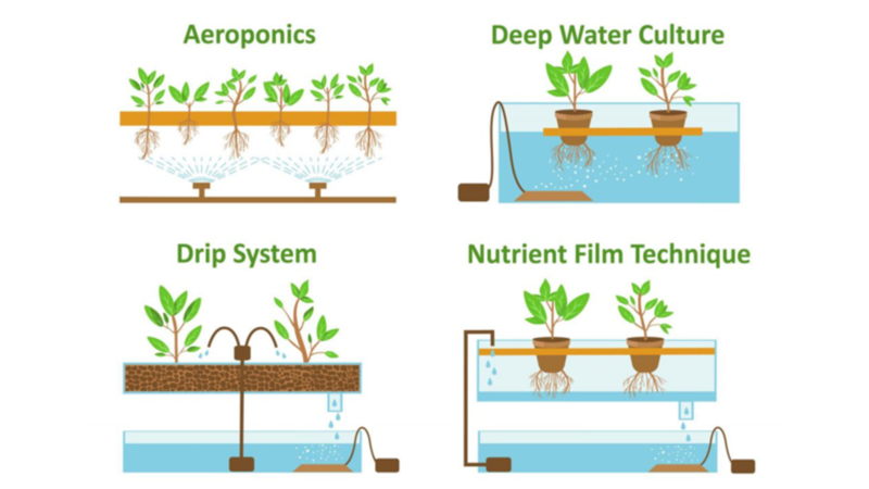 Different irrigation systems, strategies and water quality