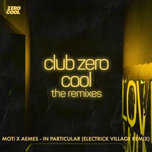 In Particular (Electrick Village remix)